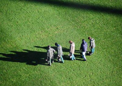 Personen pflegen den Stadion-Rasen